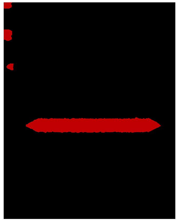 APODOMHSH EMFYLON STEREOTYPON-2